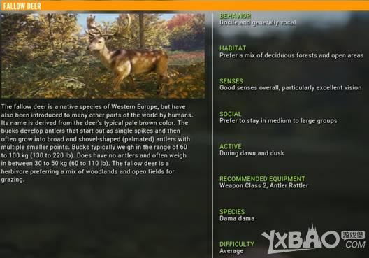 猎人野性的呼唤黇鹿有什么特性 猎人野性的呼唤黇鹿特性介绍