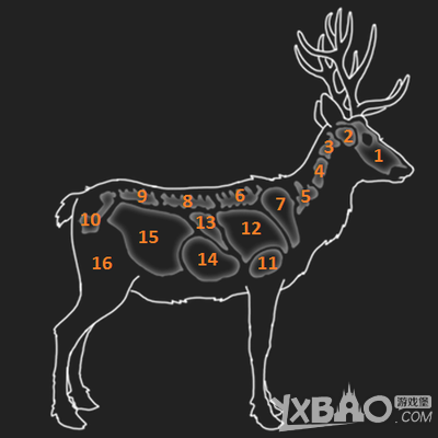 猎人野性的呼唤黇鹿的弱点是什么 猎人野性的呼唤黇鹿弱点一览