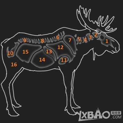 猎人野性的呼唤驼鹿有什么弱点 猎人野性的呼唤驼鹿弱点介绍