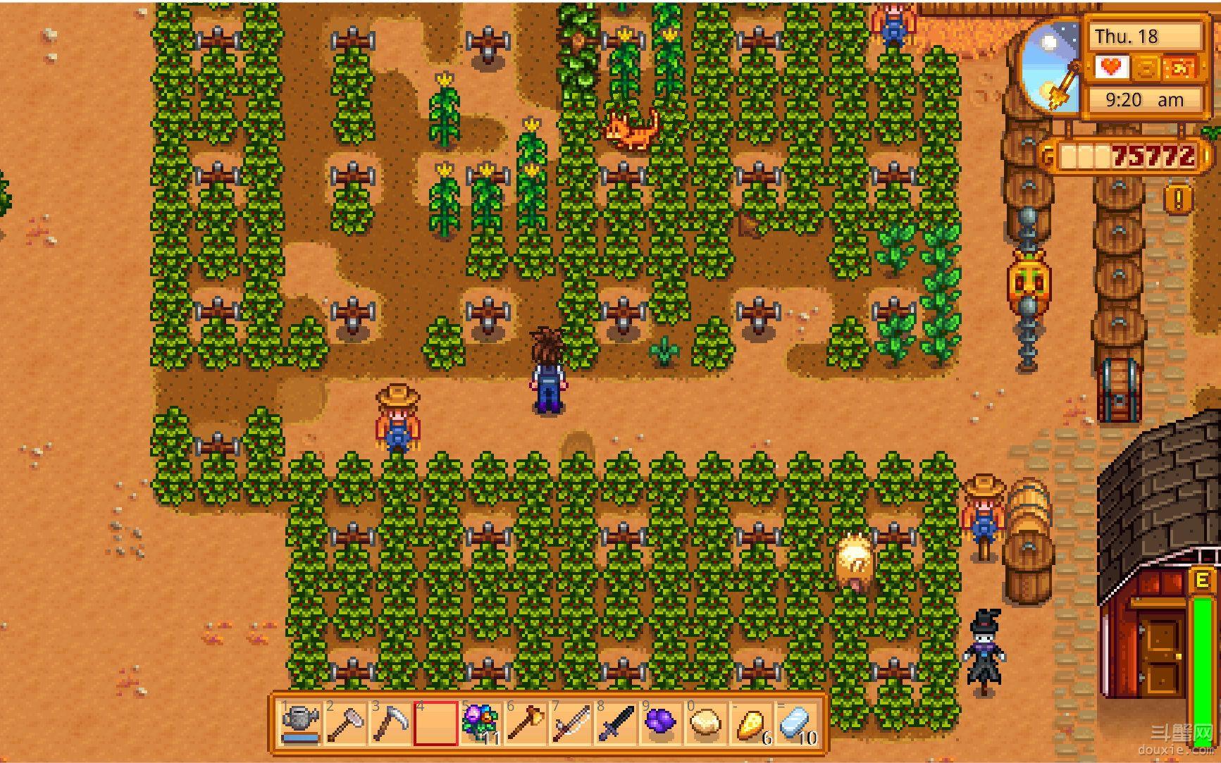 星露谷物语夏天种蓝莓还是杨桃赚钱快 星露谷物语夏天种植技巧