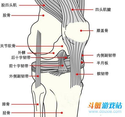 上古卷轴5攻略:死理性派的膝盖中箭分析