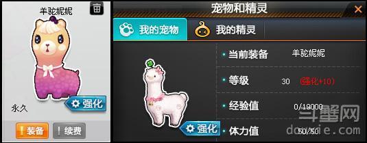 QQ飞车宠物强化怎么强化 宠物强化图文攻略介绍