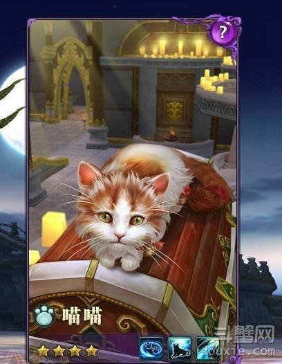 剑网3怎么提高宠物星级 宠物星级可以提升进化吗